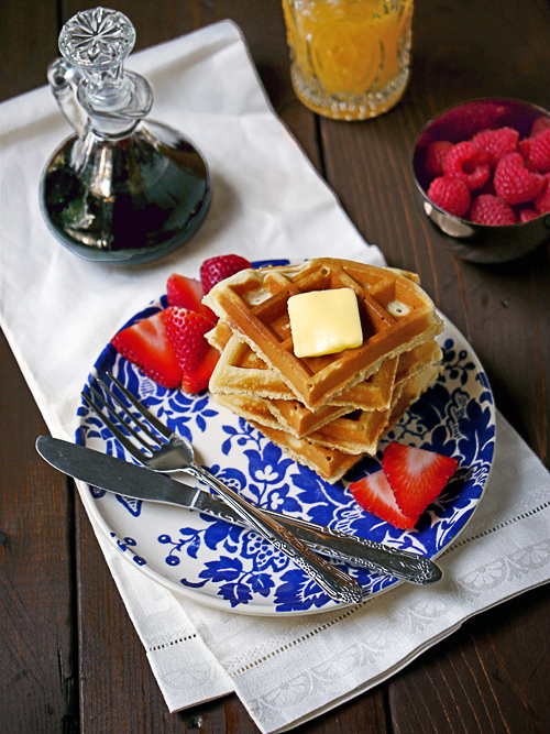 sugar-free-low-carb-grain-gluten-free-paleo-diabetic-waffles